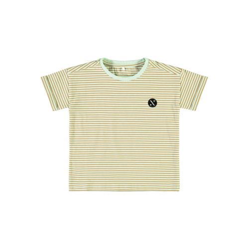 Stribet t-shirt Name It Subtle Green